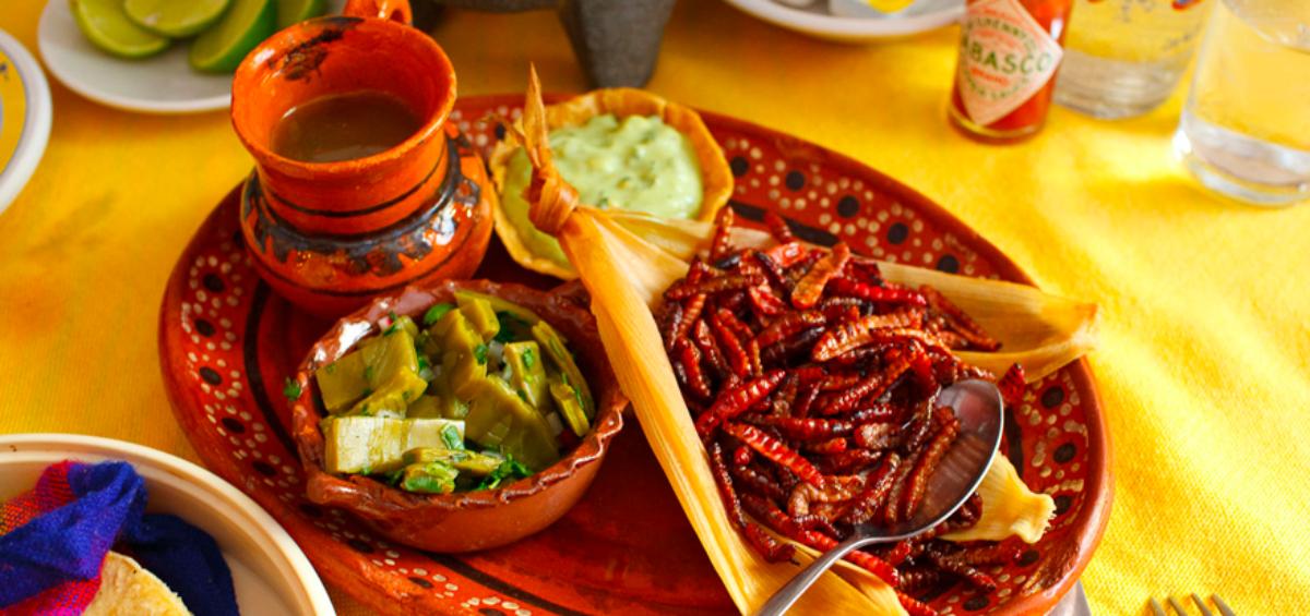 11 Platillos Típicos De México Con Insectos Somos Mexicanos
